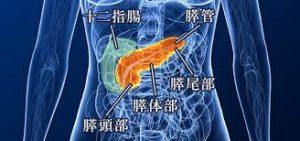 手術のみでは完治しにくい「膵臓ガン」とはどのような病気なのか?