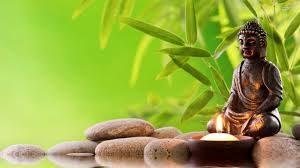 ストレス解消、うつ病改善、生活習慣病予防に効果的な禅